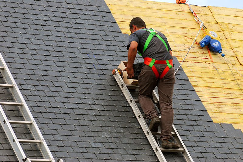 roofing contractor shingles